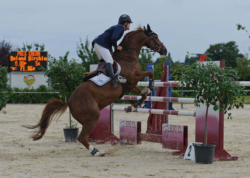 CSI** - Concours de Saut d'obstacle International