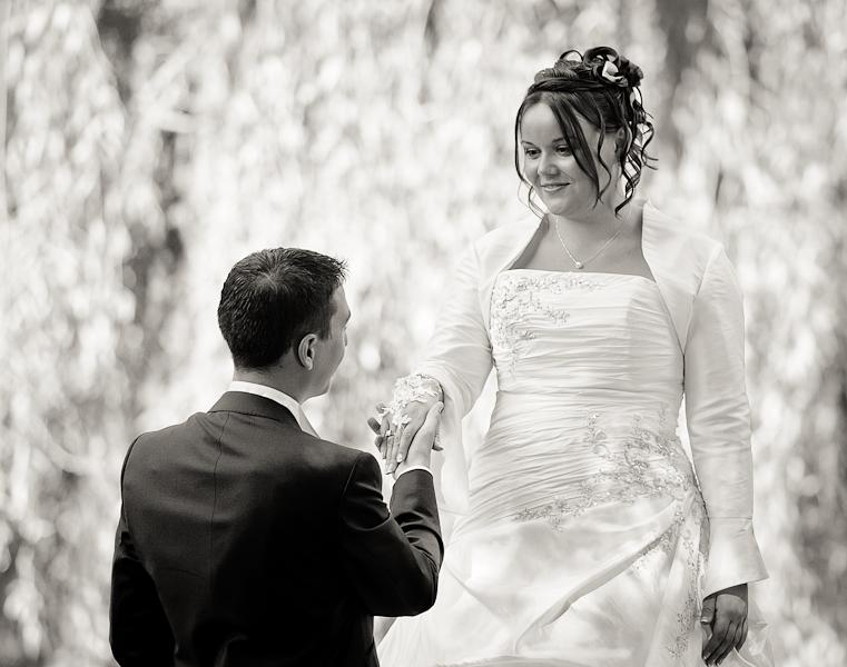 Le marié fait sa demande à genou devant la mariée