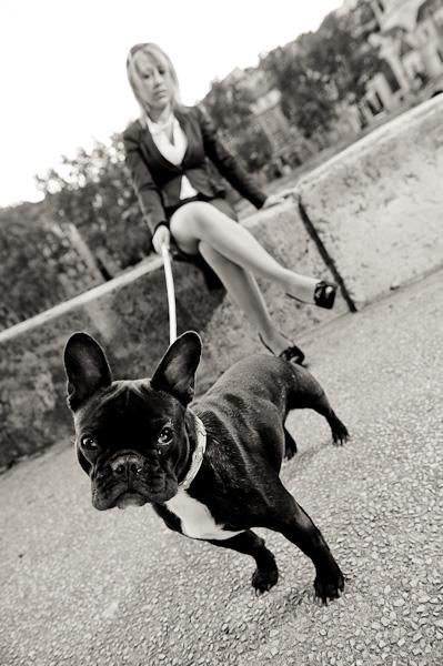 Portrait d'un bulldog français tenu en laisse par sa maitresse